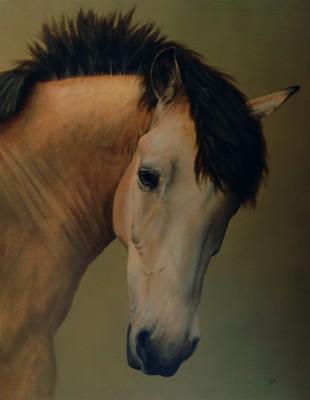 Sox, acrylic on canvas
