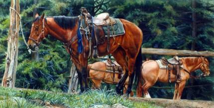 """Colorado Dude String"" Watercolour, 14 x 28 inches"