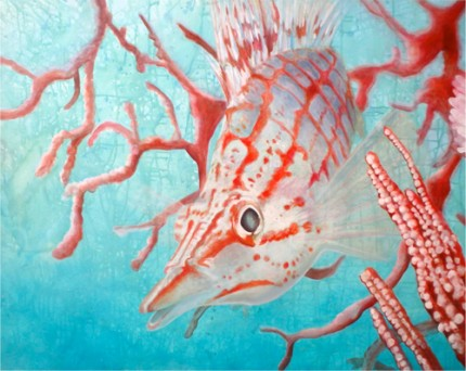 """Hawkfish"" Acrylic on canvas, 36 x 47 inches, Signed"