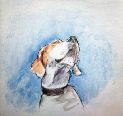 """""""Bailey"""" Watercolor on paper"""