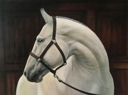 """""""White Beauty 2"""" Oil on canvas, 30 x 40 inches, Signed lower right"""
