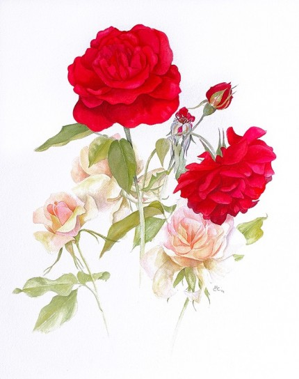 """Summer Roses"" Watercolour on paper, 22.5 x 18 inches, Signed in pencil"