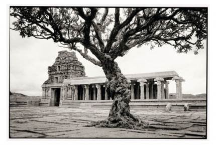 """""""Temple and tree in Hampi"""" Gelatin silver print, Edition of 25, Paper size: 50 x 60 cms, Also available in 40 x 50 cms & 76 x 100 cms"""