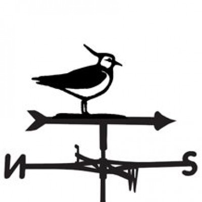 Lapwing Weathervane