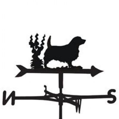 Norfolk Weathervane