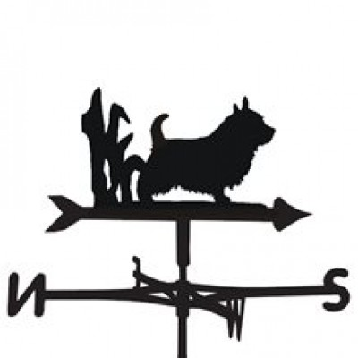 Norwich Weathervane