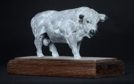 """White Park Gull"" Bronze, Limited Edition: 12, 16 x 13 x 8 cm"
