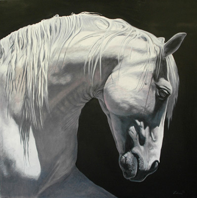 """""""Grace"""" Oil on canvas, 48 x 48 inches, 2012"""