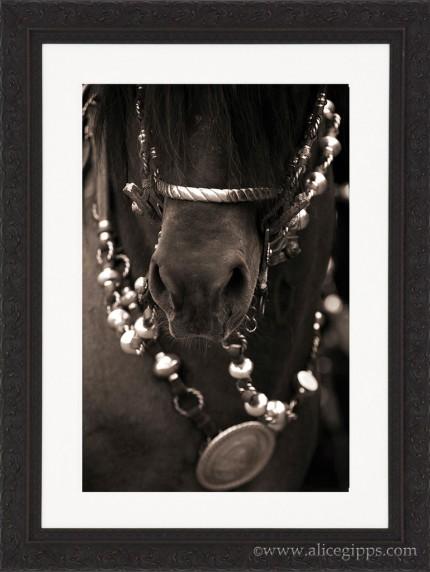 """""""Argentine Tack II"""" Sepia, framed"""