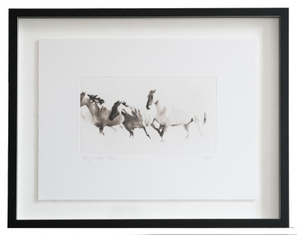 """Poetry in Motion"" Photogravure Etchings"