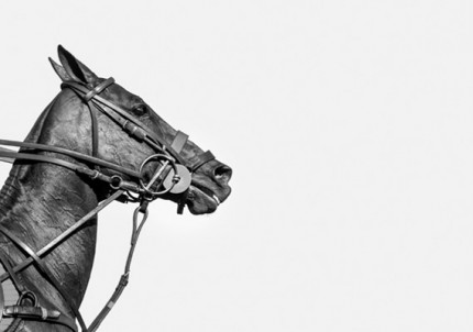 """Polo Profile"" USA 2016, Archival pigment print, Edition TBC: 16.5 x 11.7 inches, Signed & Numbered"