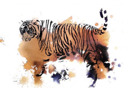 """T19 Tiger"" Jodhpur, India 2013, Archival pigment print with original coffee and ink painting on handmade Indian rag, 16.5 x 11.7 inches"