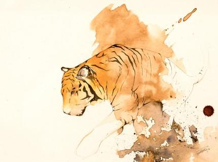 """""""Tiger V"""" Coffee & Ink, Signed"""