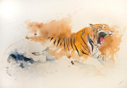 """Tiger VI"" Coffee & Ink, Signed"