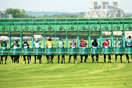 Jockeys and race horses in the starting gate in Chantilly, France