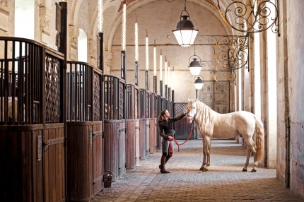 Vicky Moon takes readers on a tour of international stables in her latest book