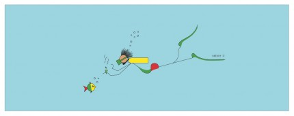"""""""Dready Diver"""" Digital graphic art and acrylic inks, Limited edition archival pigment print, Edition of 99: 13 x 36 inches, Signed and Numbered"""