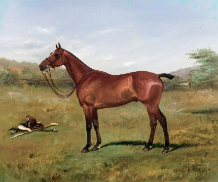 """Polo Pony Still Life"" Oil on canvas, 24 x 30 inches, Signed"