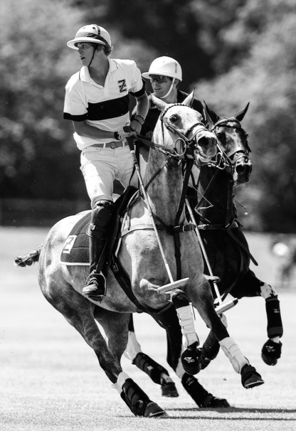 """Polo Limited Edition 015"" Fine art glossy photo paper, Edition of 10, 20 x 13.75 inches, Paper: 24 x 17.75 inches"