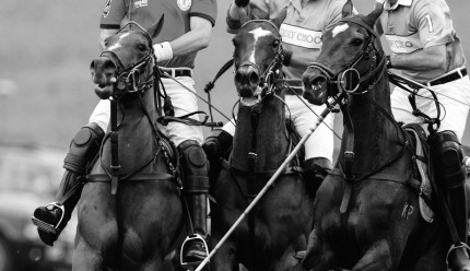 """Polo Limited Edition 022"" Fine art glossy photo paper, Edition of 10, 11.57 x 20 inches, Paper: 15.57 x 24 inches"