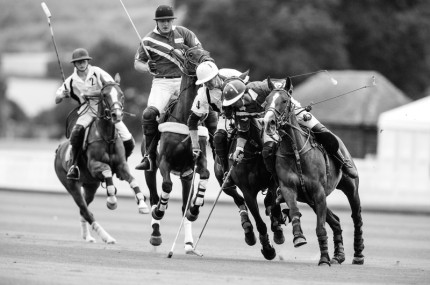 """Polo Limited Edition 027"" Fine art glossy photo paper, Edition of 10, 13.31 x 20 inches, Paper: 17.31 x 24 inches"