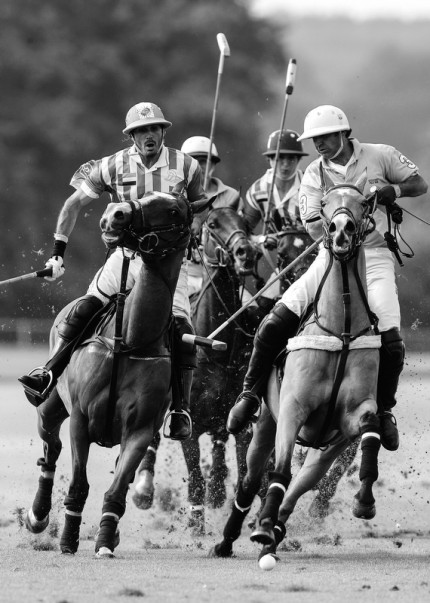 """Polo Limited Edition 036"" Fine art glossy photo paper, Edition of 10, 20 x 14.26 inches, Paper: 24 x 18.26 inches"