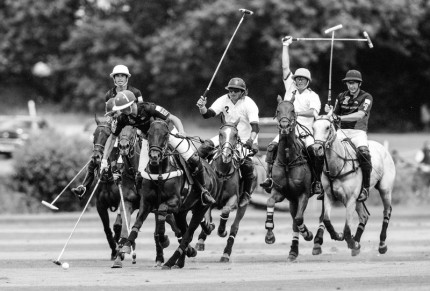 """Polo Limited Edition 037"" Fine art glossy photo paper, Edition of 10, 13.58 x 20 inches, Paper: 17.58 x 24 inches"