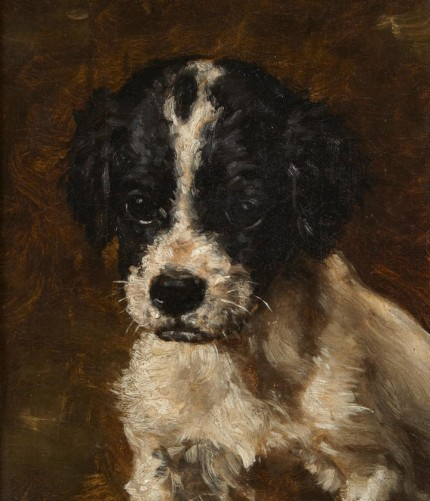 """""""A Spaniel Puppy"""" Oil on canvas, 7.5 x 5.5 inches, Signed JM Tracy"""